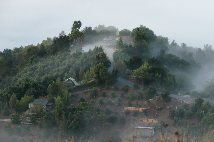 A photo of the monastery wrapped in morning fog